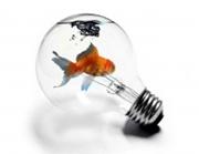 самые креативные идеи дизайна 2012