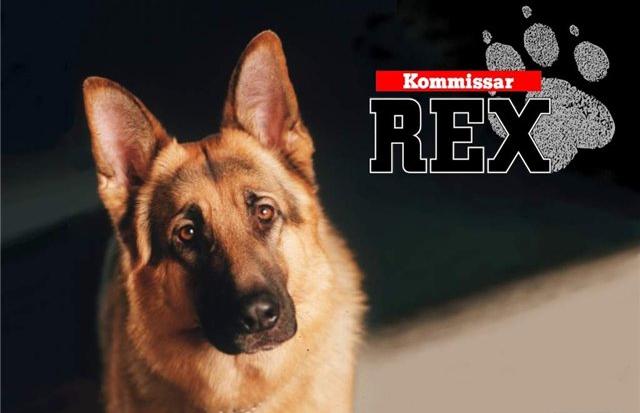 Комиссар Рекс