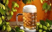 Топ-10 необычных способов применения пива