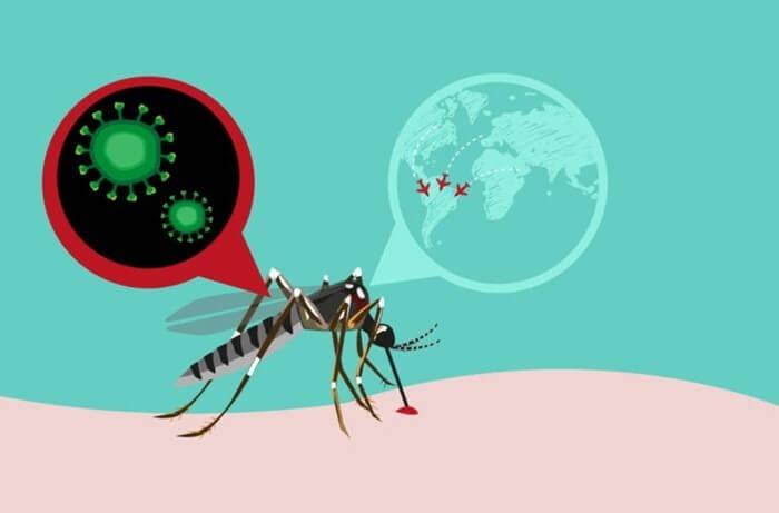 Топ-5 смертельных болезней от глобального потепления (фото)