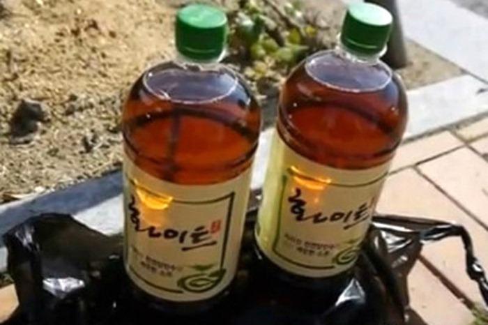 Цсонгсул - напиток из фекалий