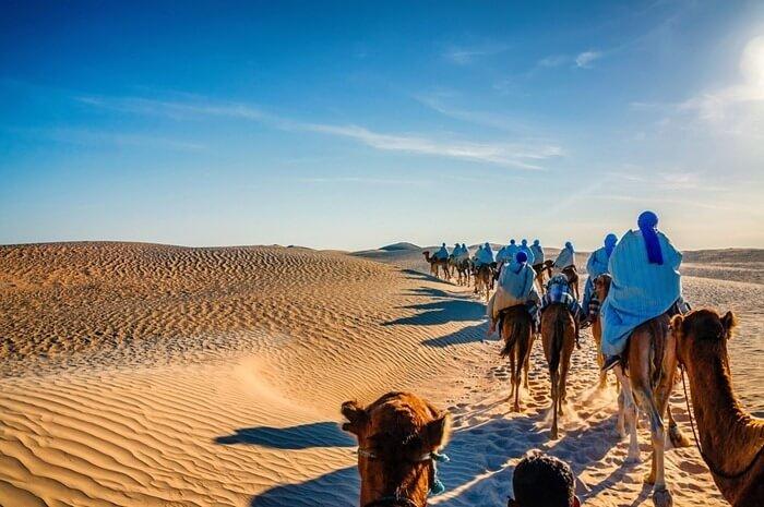 Путешествие на верблюдах