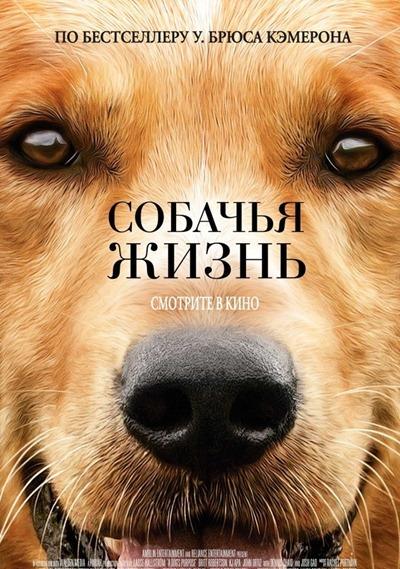 Собачья жизнь – лучшая американская семейная комедия