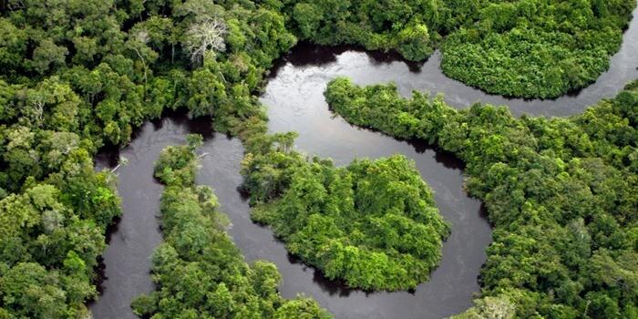 Амазонка – самая длинная река в мире