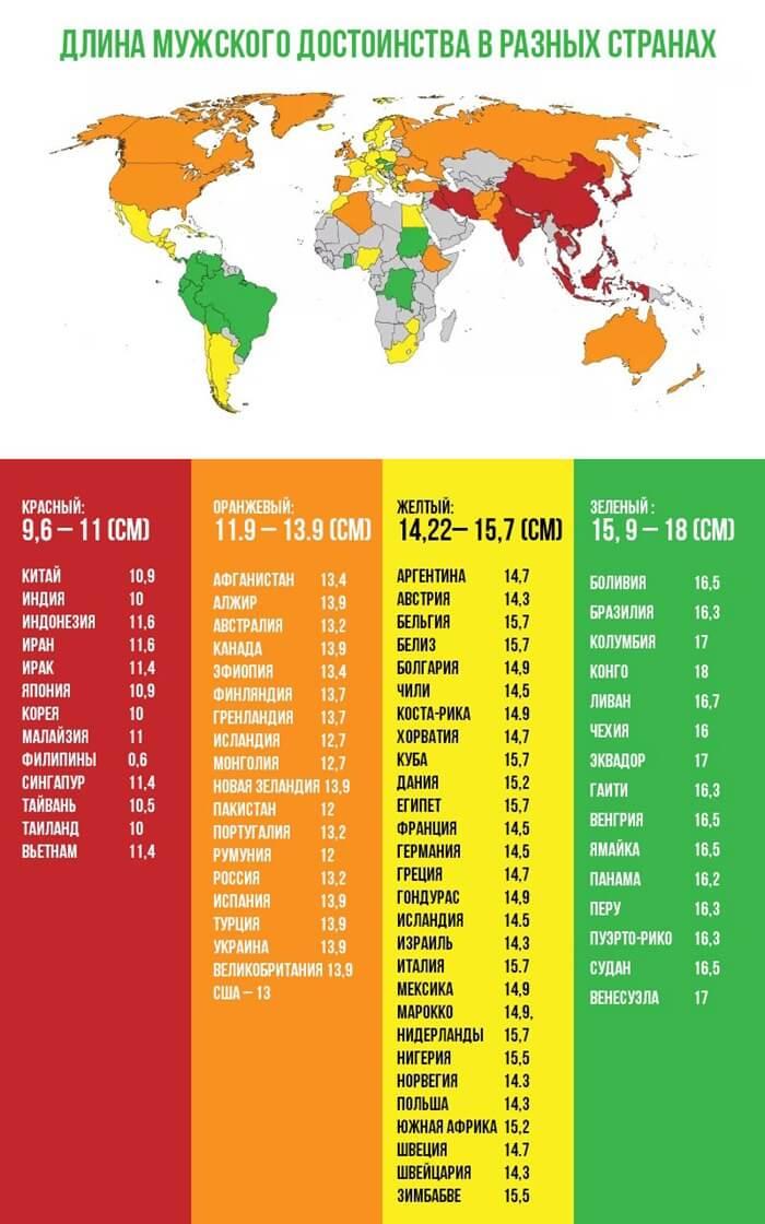 Размеры-пенисов-в-странах-мира