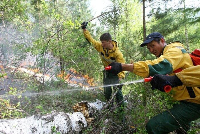 Республика Тува тушение леса