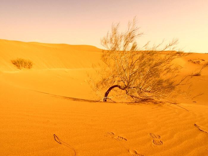 Деште-Лут абсолютный погодный рекорд температуры воздуха