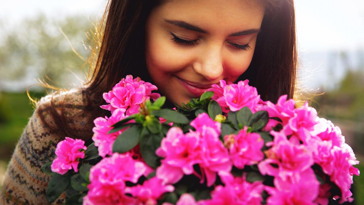 Что посеять на рассаду: ароматные и душистые цветы для благоухающего сада