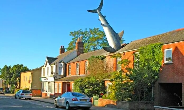 Shark Attack Home