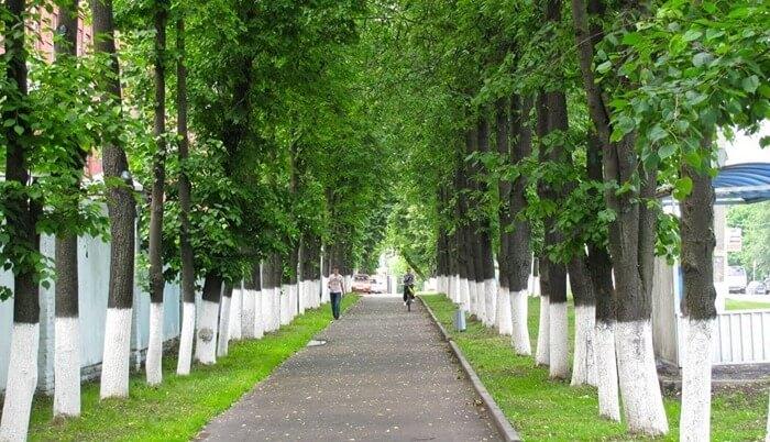 Города россии с лучшей экологией для жилья