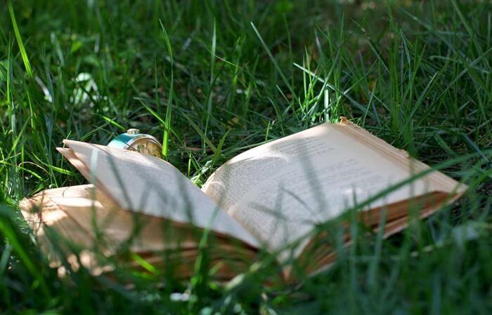 Книги в походе