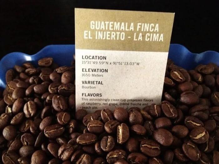 Finca El Injerto Coffee