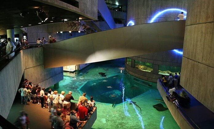 National Aquarium, США