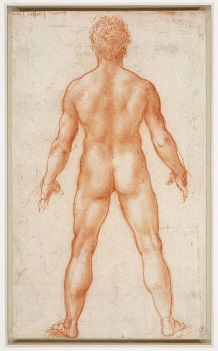 Леонардо да Винчи, «Стоящий обнаженный мужчина»