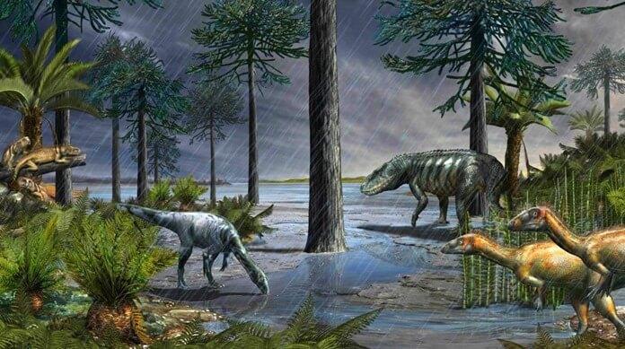 Самый продолжительный дождь в истории