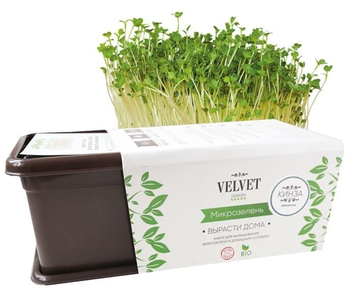Набор для выращивания микрозелени, оригинальный подарок маме на Новый год 2022