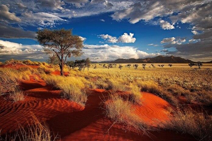 Куда полететь в октябре в Африку: Намибия
