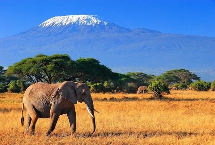 Экзотический отдых в октябре: Кения, Африка